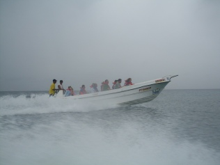 SDC11346
